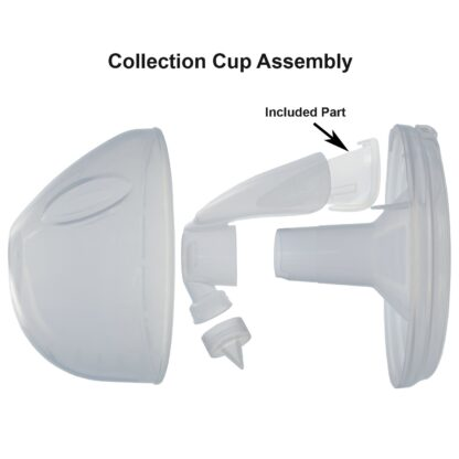 Duckbill_Cup_setup.jpg